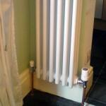 Designer radiator column type